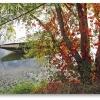 canoe-river