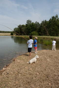 Copy (2) of boys fishing with miss hattie